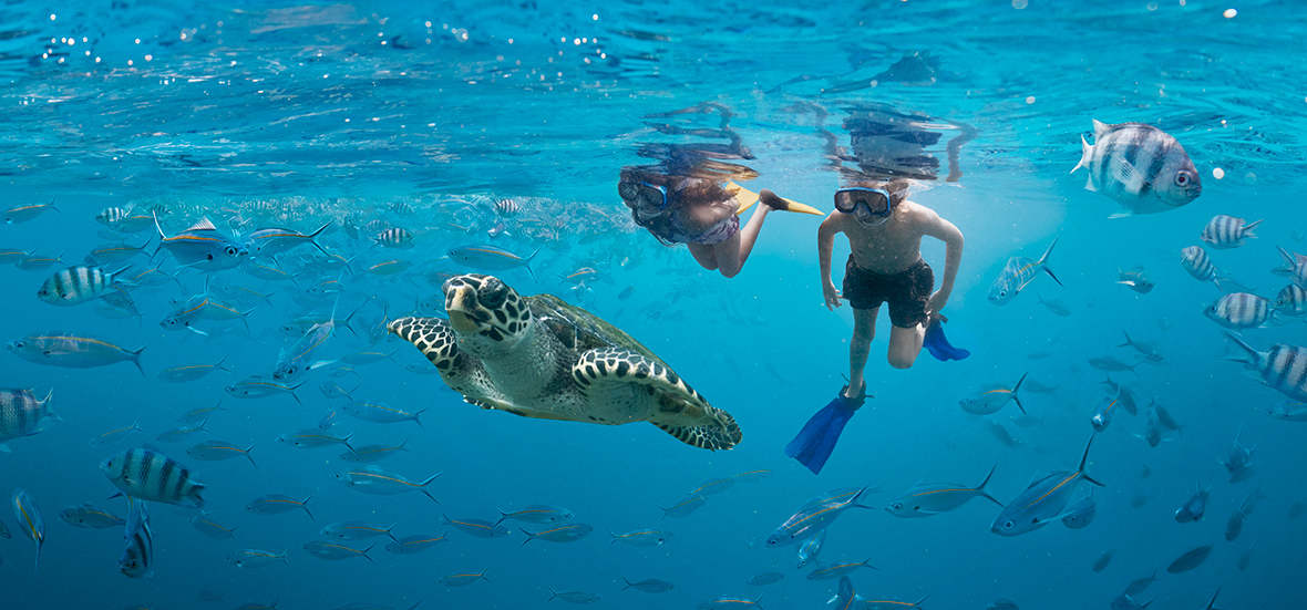 Girl_and_Boy_Snorkelling_Turtle_Layer_Final_HR