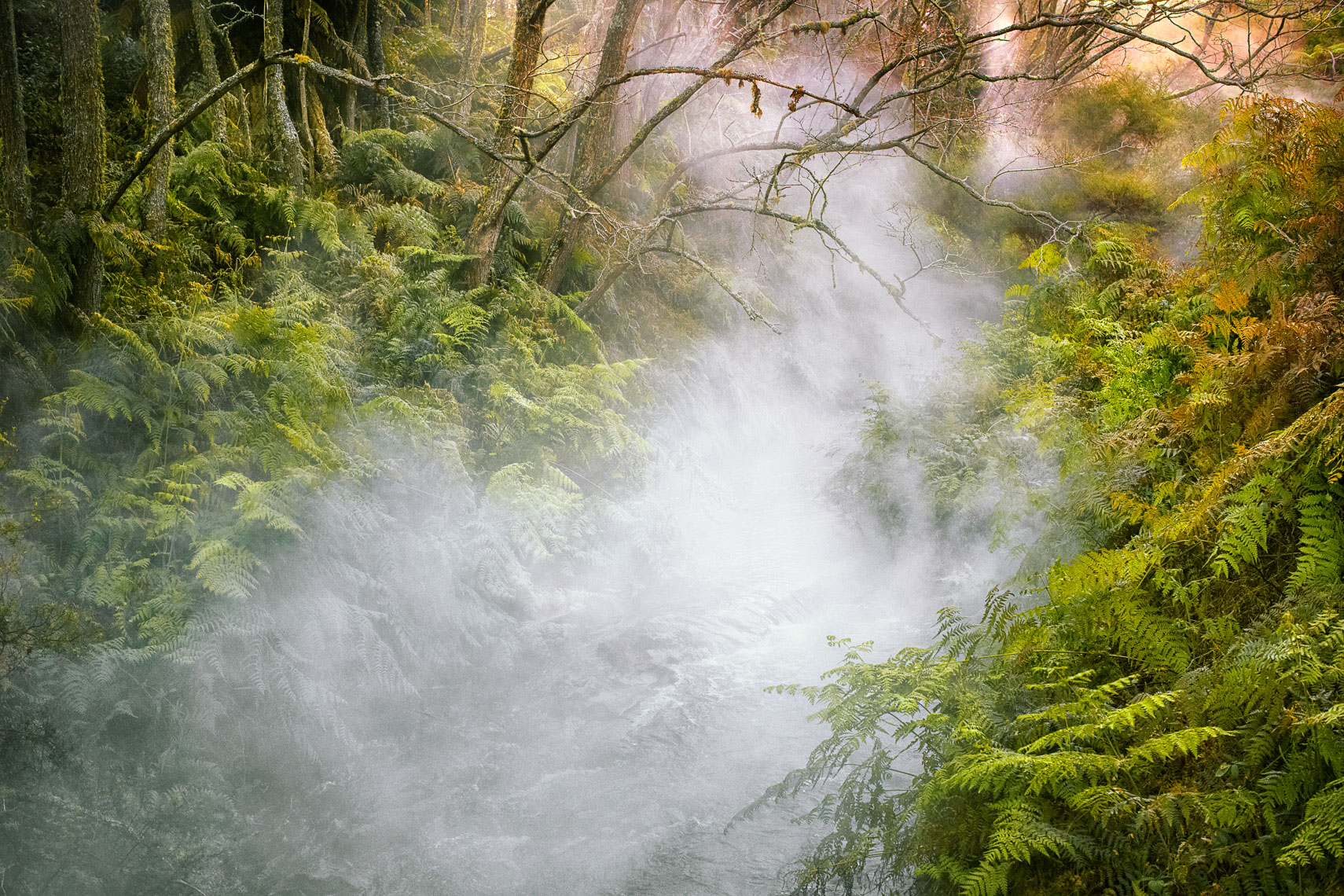 Rotorua Landscape Photography New Zealand by New Zealand Photographer Fraser Clements